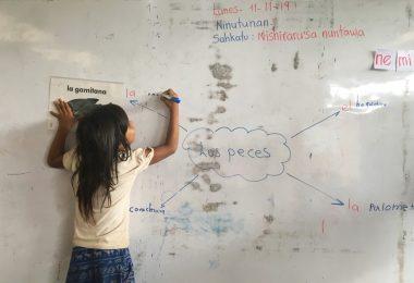 alidación del método y los materiales en las escuelas EIB del pueblo Kichwa.
